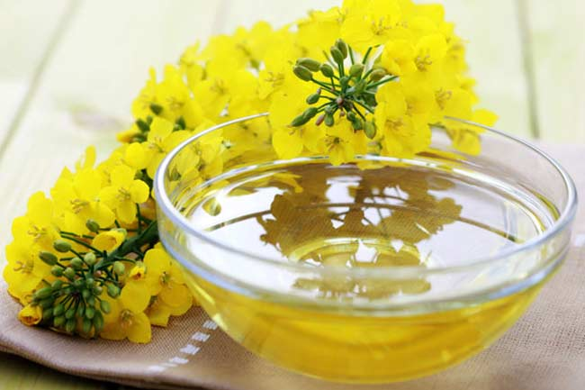 refined-rapeseed-oil